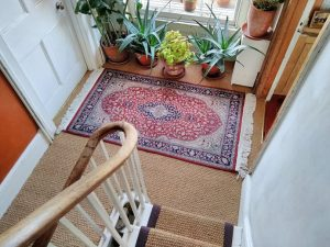 Coir Panama Natural stair runner , brown border, matching Landing
