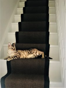 Sisal chocolate Black border (2)