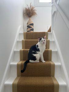 Sisal gold Beige linen border (Cute cat!)