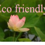 eco friendly logo (1)