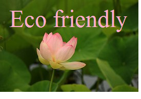 eco friendly logo (1)